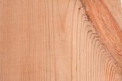 σκανδιναβικό πεύκο Στοκ Φωτογραφία