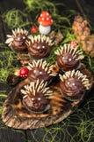 Σκαντζόχοιρος Cupcakes στοκ εικόνα