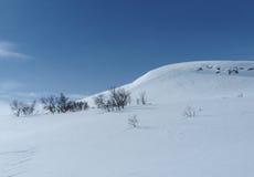 Σκανδιναβικό βουνό Στοκ εικόνα με δικαίωμα ελεύθερης χρήσης