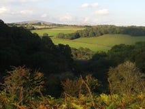 Σκαπάνη σε Dartmoor που λαμβάνεται από τη λίβρα Στοκ Φωτογραφία