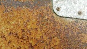 Σκαρφαλωμένος σε ένα σκουριασμένο πιάτο χάλυβα Στοκ φωτογραφία με δικαίωμα ελεύθερης χρήσης