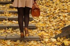 Σκαλοπάτια βημάτων φθινοπώρου Στοκ εικόνες με δικαίωμα ελεύθερης χρήσης