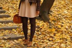 Σκαλοπάτια βημάτων φθινοπώρου Στοκ Φωτογραφία