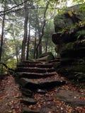 Σκαλοπάτια βράχου που κάμπτουν στα ξύλα Στοκ φωτογραφία με δικαίωμα ελεύθερης χρήσης