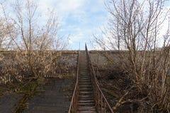 σκαλοπάτια επάνω Στοκ φωτογραφίες με δικαίωμα ελεύθερης χρήσης