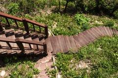 σκαλοπάτια κήπων Στοκ εικόνες με δικαίωμα ελεύθερης χρήσης