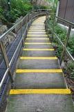 Σκαλοπάτια σπερμάτων και κίτρινη γραμμή Στοκ Φωτογραφία