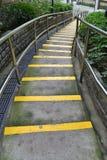 Σκαλοπάτια σπερμάτων στο πάρκο Στοκ εικόνα με δικαίωμα ελεύθερης χρήσης