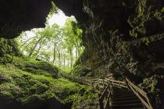 Σκαλοπάτια σπηλιών Στοκ εικόνα με δικαίωμα ελεύθερης χρήσης