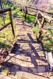 Σκαλοπάτια στη φύση Στοκ Φωτογραφία