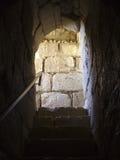 Σκαλοπάτια του Castle Στοκ εικόνες με δικαίωμα ελεύθερης χρήσης