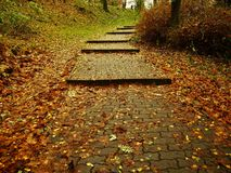 Σκαλοπάτια φθινοπώρου Στοκ Φωτογραφία