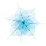 σκελετός φύλλων λουλ&omicro Στοκ Εικόνες