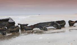 σκελετός 4 Στοκ Εικόνα