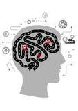 Σκεπτόμενες διαδικασίες ενός ανθρώπινου εγκεφάλου Στοκ εικόνα με δικαίωμα ελεύθερης χρήσης