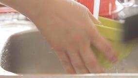 Σκεύος για την κουζίνα πλύσης γυναικών κάτω από το ρεύμα νερού απόθεμα βίντεο