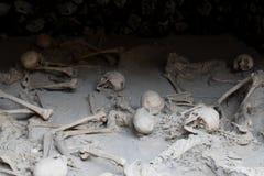 Σκελετοί στα υπόστεγα βαρκών, αρχαιολογική περιοχή Herculaneum, Campania, Ιταλία στοκ εικόνα
