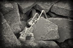 Σκελετός αποκάλυψης στοκ εικόνες
