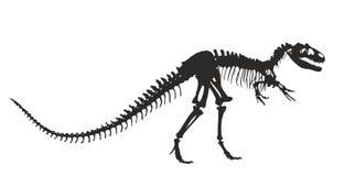 σκελετός του δεινοσαύρου διανυσματική απεικόνιση