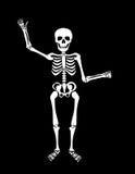 Σκελετός Στοκ φωτογραφία με δικαίωμα ελεύθερης χρήσης