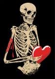 σκελετός Στοκ Φωτογραφίες