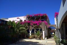 Σκηνές από Santorini Στοκ Φωτογραφίες