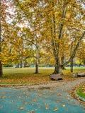 Σκηνές πάρκων φθινοπώρου Στοκ φωτογραφία με δικαίωμα ελεύθερης χρήσης