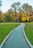 Σκηνές πάρκων φθινοπώρου Στοκ Εικόνα