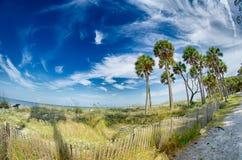 Σκηνές παραλιών στη νότια Καρολίνα νησιών κυνηγιού Στοκ Εικόνες
