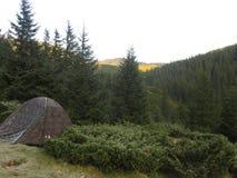 Σκηνή ήλιων βράχου βουνών forast Στοκ Φωτογραφίες