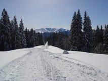 σκηνή βουνών στοκ φωτογραφία
