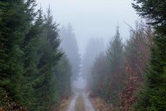 Σκηνή βρώμικων δρόμων της Misty Στοκ Εικόνες