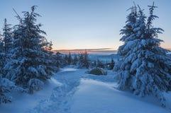 Σκηνή καλυμμένο στο χιόνι βουνό στοκ εικόνες