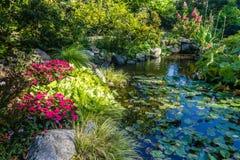 Σκηνή λιμνών κήπων στοκ εικόνα