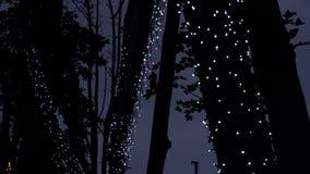 Σκηνή νύχτας με τα φω'τα νύχτας απόθεμα βίντεο