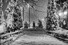 Σκηνή νύχτας σε ένα πάρκο Στοκ φωτογραφία με δικαίωμα ελεύθερης χρήσης