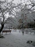 Σκηνή νύχτας στη χιονώδη ημέρα σε Jerevan Στοκ εικόνες με δικαίωμα ελεύθερης χρήσης