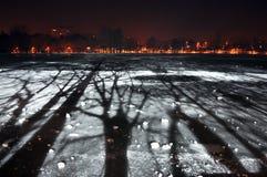 Σκηνή νύχτας χειμερινών πάρκων Στοκ Εικόνες