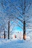 Σκηνή νύχτας χειμερινών τοπίων - εγκαταλειμμένη χιονώδης διάβαση πεζών με τις χιονοπτώσεις και χιονώδη δέντρα στη νύχτα Στοκ εικόνα με δικαίωμα ελεύθερης χρήσης