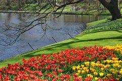 σκηνή πάρκων ήρεμη Στοκ Φωτογραφία