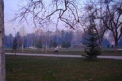Σκηνή πάρκων το βράδυ Στοκ Φωτογραφίες