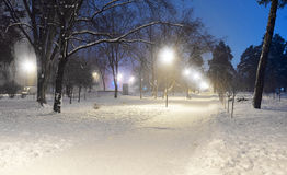 Σκηνή πάρκων χειμερινής νύχτας Στοκ Εικόνες