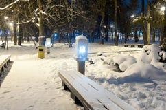 Σκηνή πάρκων χειμερινής νύχτας Στοκ φωτογραφίες με δικαίωμα ελεύθερης χρήσης