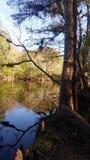 Σκηνή 4 ποταμών Στοκ εικόνες με δικαίωμα ελεύθερης χρήσης
