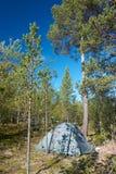 Σκηνή που ρίχνεται στο δάσος Στοκ φωτογραφία με δικαίωμα ελεύθερης χρήσης
