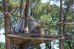 Σκηνή σε ένα δέντρο σε μια στρατοπέδευση στοκ εικόνες με δικαίωμα ελεύθερης χρήσης