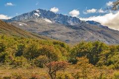 Σκηνή τοπίων βουνών της Παταγωνίας, Aisen Χιλή Στοκ Φωτογραφία