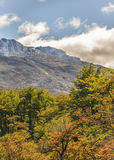 Σκηνή τοπίων βουνών της Παταγωνίας, Aisen Χιλή Στοκ φωτογραφία με δικαίωμα ελεύθερης χρήσης