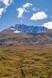 Σκηνή τοπίων βουνών της Παταγωνίας, Aisen Χιλή Στοκ φωτογραφίες με δικαίωμα ελεύθερης χρήσης