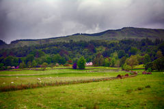 Σκηνή τοπίων ορεινών περιοχών, Kilmahog, Σκωτία Στοκ Φωτογραφίες